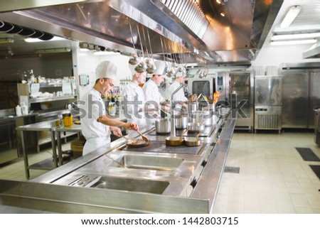 cook cooks in a restaurant #1442803715