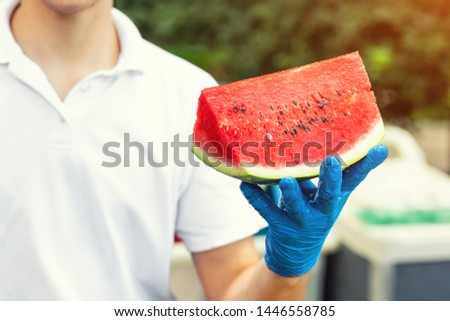 Cook in rubber gloves holding in hand and offering big piece of fresh tasty juicy sliced watermelon for hotel guests at tropical resort outdoors #1446558785
