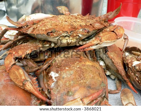 cooked blue crabs from the Chesapeake Bay of Maryland