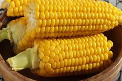 Cooked corn,  healthy vegan snack