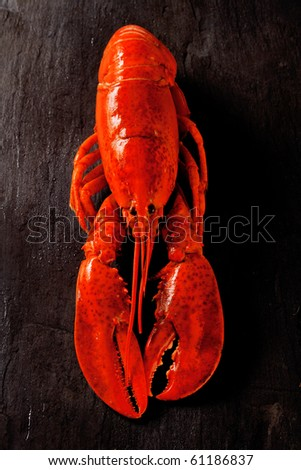 cooked lobster on black slate table