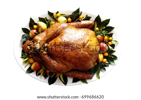 Cooked & Plated Turkey with Garnishes on a Plate. Top-view, flat-lay, isolated on white background.