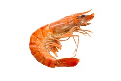 Cooked shrimp without tentacles isolated on white background