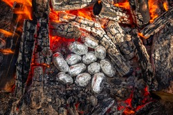 Cooking baked potatoes on fire in hot coals. Buried tasty vegetables in foil in bonfire on picnic. Vegetarian food outdoors. Wrapped fried potatoes on fire, barbecue. Food in forest, evening dinner