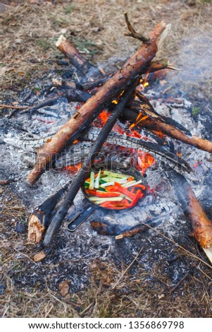 Cooking dishes from red bell peppers and cucumbers in a pan on a fire. #1356869798