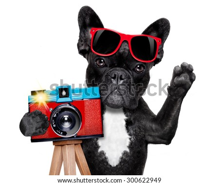 cool tourist photographer dog taking a snapshot or picture with a retro old camera gesturing to say cheese , isolated on white background