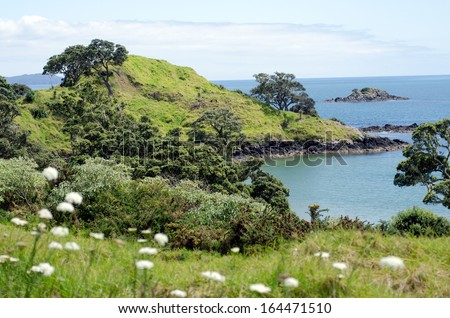 Coopers beach, a famous travel destination in northland New Zealand.