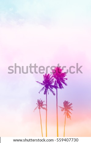 Copy space of tropical palm tree with sun light on sky background. Summer vacation and nature travel environment concept. Vintage tone filter effect color style.   #559407730