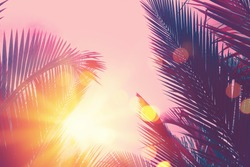 Copy space pink blue tropical palm leaves tree on sky with colorful bokeh sun light abstract background. Summer vacation and nature travel adventure concept. Vintage tone filter effect color style.