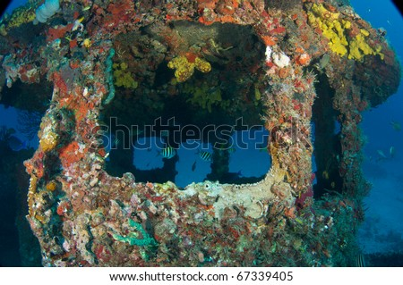 Coral encrusted wheelhouse of a small tugboat sunk as an artificial reef in Deerfield Beach, Florida.