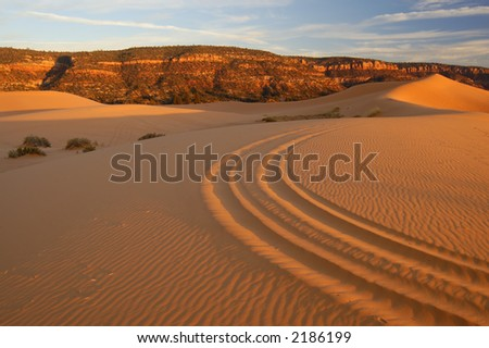 Coral Pink Sand Dunes at sunset. Pink dunes with ATV (OHV) tracks leading into the  sinuous dune shape with blue sky above.