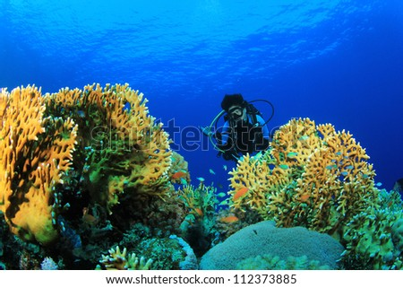 Coral Reef and female Scuba Diver