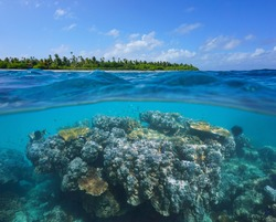 Coral reef and tropical island, seascape over and under water, Pacific ocean, Oceania