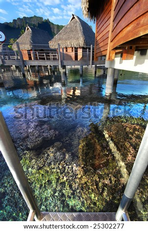 Coral Reef Below Bungalow Dock, Island of Moorea, French Polynesia