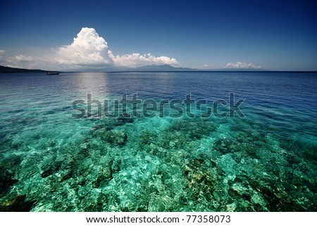 Coral reef transparent sea and white clouds. Bunaken island. indonesia