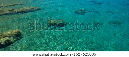 coral reefs shallow water sea landscape bottom in tropic region of the Earth, scenic top view