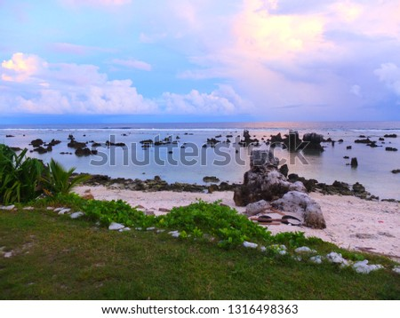 Coral rocks on a Anibare beach, Nauru (3rd smallest country in the world), South Pacific