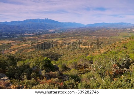 Corbieres landscape in southern France #539282746