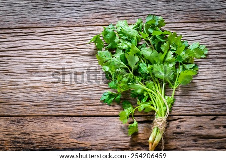 Coriander bunch on old wood