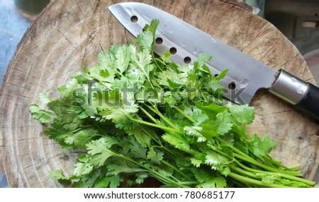 coriander leaf and cutting knife on wooden floor.vegetable. #780685177