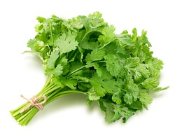Coriander leaves isolated on white background, clipping path, full depth of field