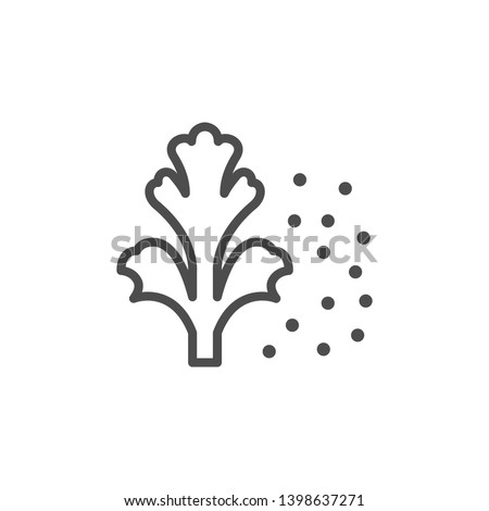 Coriander line icon isolated on white