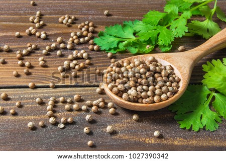 Coriander seed and leaf on wood background