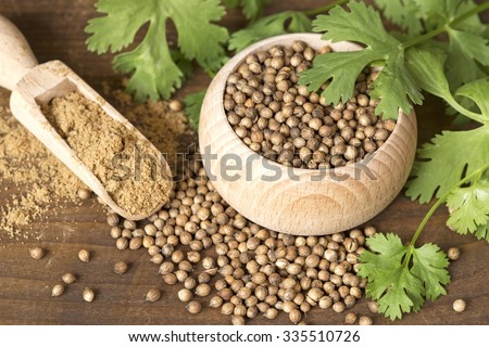 Coriander seeds and leaves on a wooden background #335510726