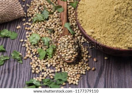 Coriander seeds, fresh coriander and powdered coriander #1177379110