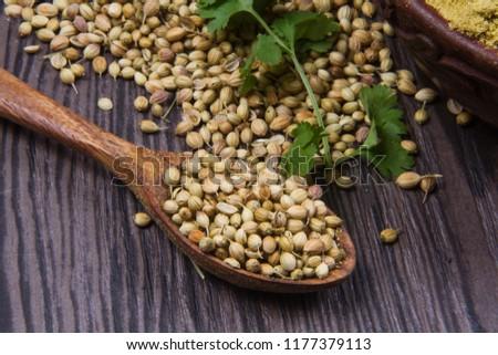 Coriander seeds, fresh coriander and powdered coriander #1177379113