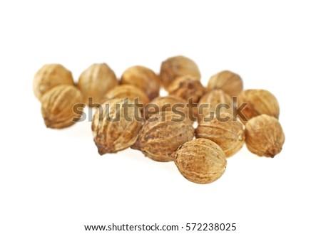 Coriander seeds isolated on white background #572238025