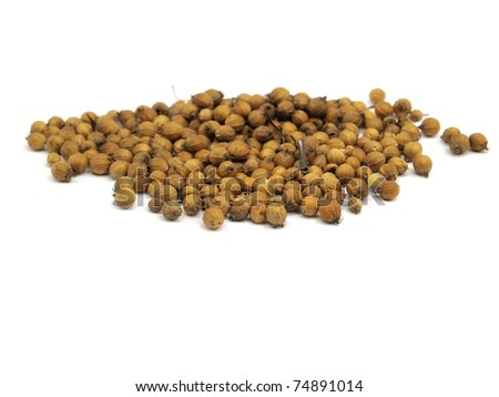 Coriander seeds on  a white background