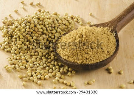 coriander spice on a wooden spoon, isolated on  background