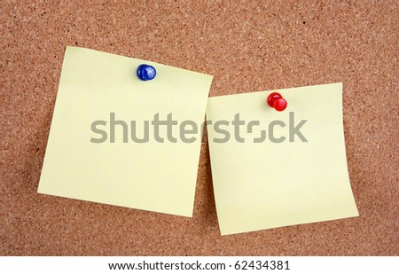cork board with blank notes attached with pins