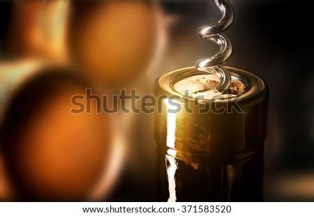 Corkscrew in a bottle Stock photo ©