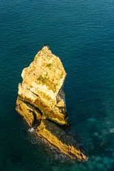 Cormorants perched on the single sea stack at Seaford Head East Sussex south east England