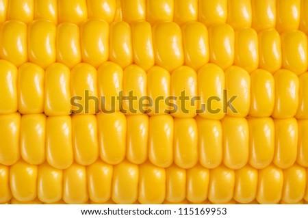 corn background, macro closeup