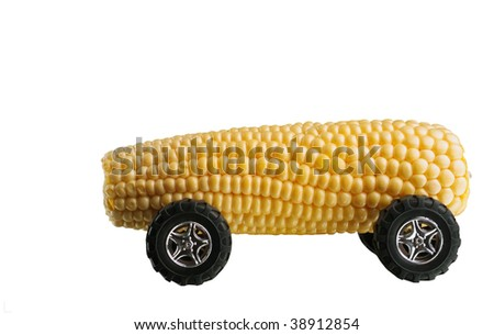 Corn cob clean bio fuel concept isolated on white