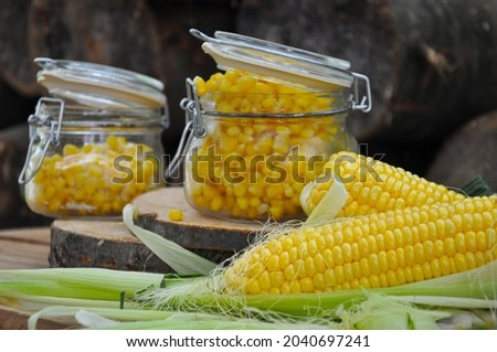 Corn. Frozen corn in a glass jar. Harvesting vegetables for the winter. Canned sweet corn in a glass jar, fresh and boiled corn on the cob.