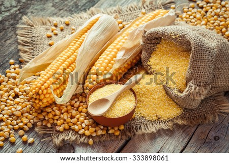 Corn groats and seeds, corncobs on wooden rustic table. Selective focus Stockfoto ©