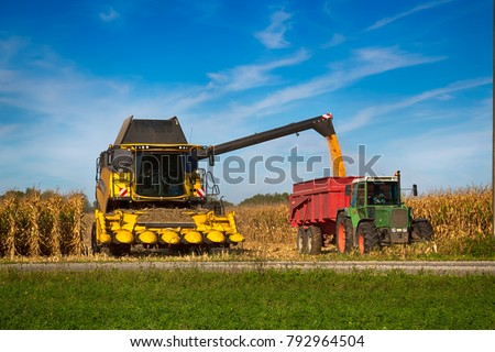 Corn harvester  in the field of buckwheat loading truck in farmland.