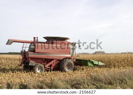 Corn Harvesting combine in the field