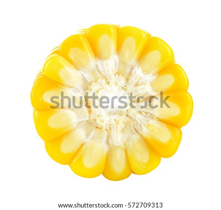 Corn on a white background #572709313