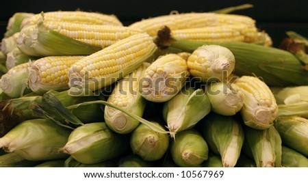 corn on the cob in husks; shallow depth of field