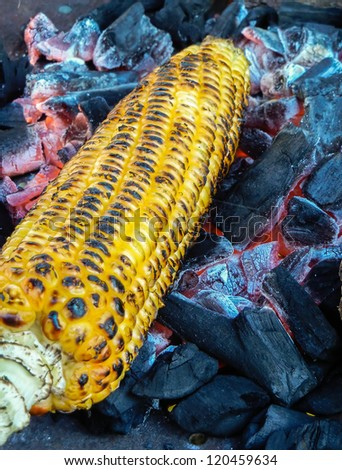 Corn roasting  barbecue on coal fire for authentic test