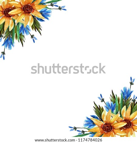 Corner frame with wildflowers, spring blossom (flowering), chicory, sunflower, green leaves on a white background. watercolor illustration