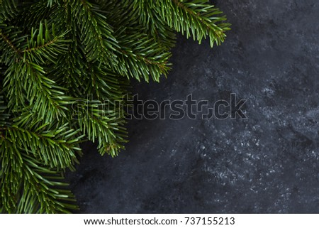 Corner made of green spruce christmas tree branches on a dark gray background #737155213