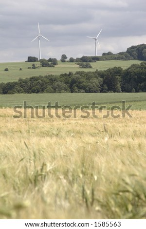 cornfield with windenergy in portrait format