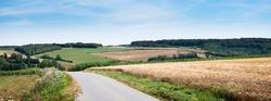 cornfields and meadows under blue sky in french pas de calais near boulogne