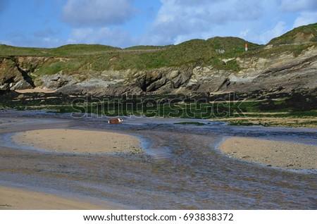 Cornish Coastline #693838372